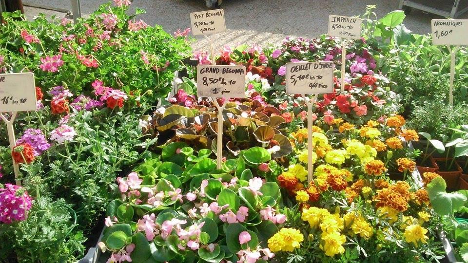 Marché de fleurs à Montignac