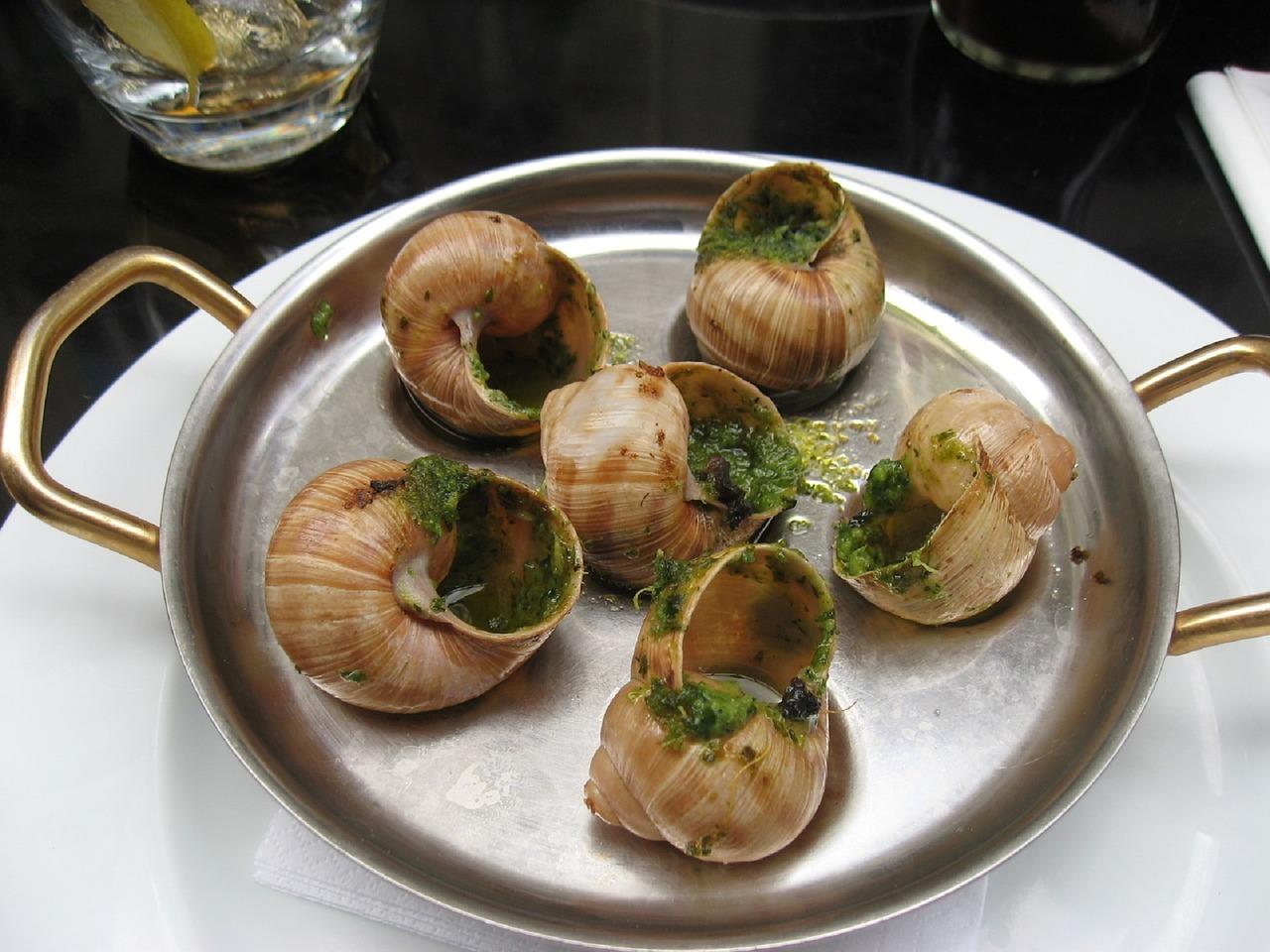 escargots du périgord