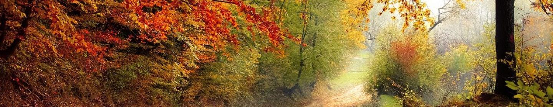 automne_vallee_vezere