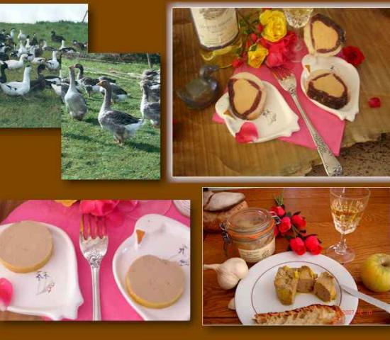 Bois_Bareirou_foie_gras_montignac_lascaux