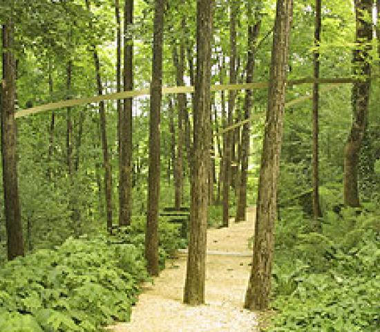 Les jardins de l 39 imaginaire lascaux dordogne your holidays in perigord noir - Jardins de l imaginaire terrasson ...