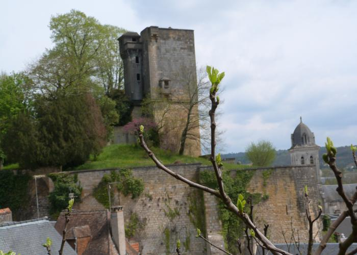 Forteresse de Montignac