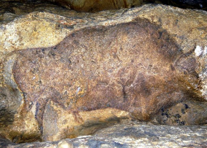Cueva de Font de Gaume