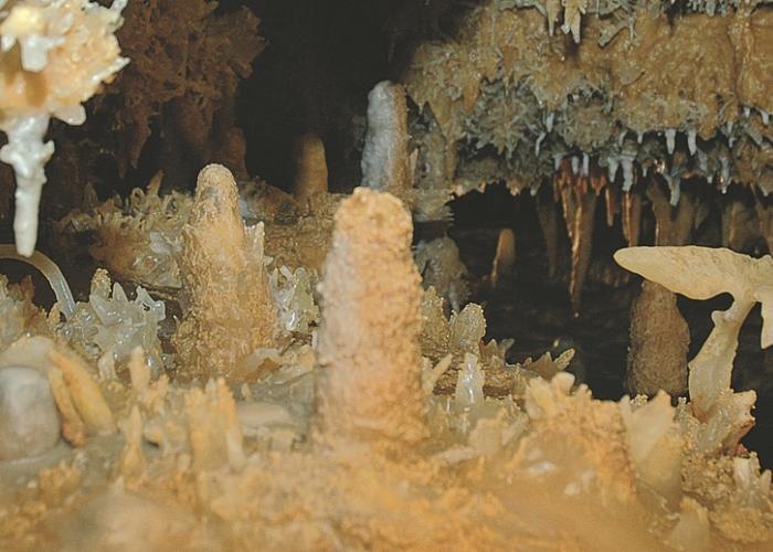 Grotte du Grand Roc, Les Eyzies