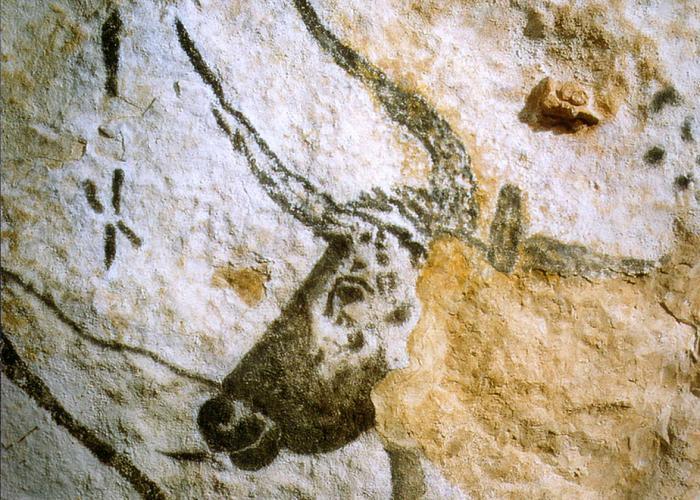 La Grotte de Lascaux II