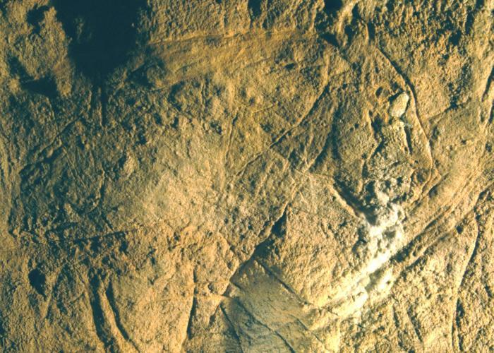 Cueva les Combarelles