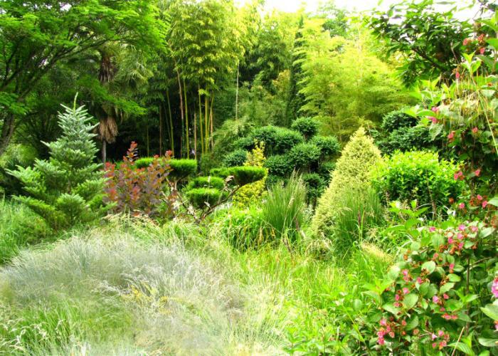 Les jardins de Planbuisson au Buisson