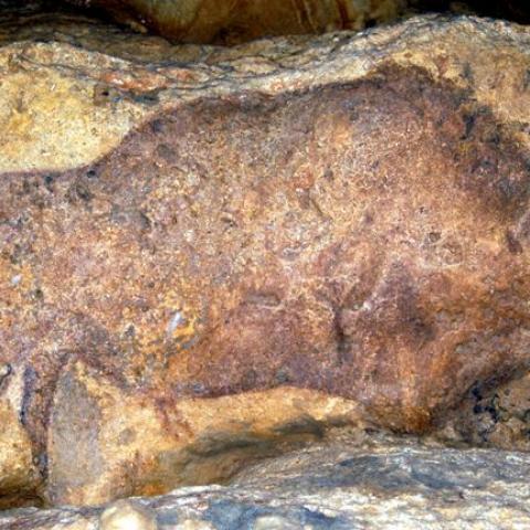Grotte de Font de Gaume
