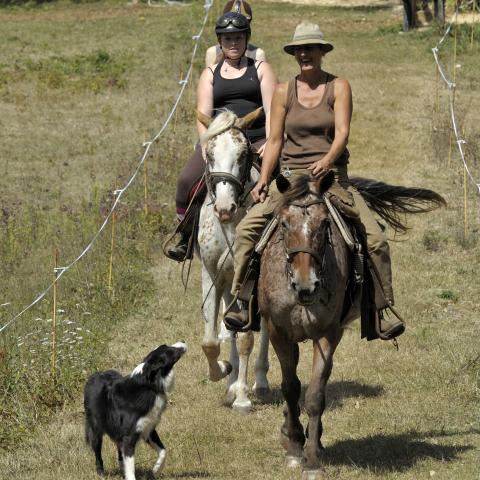 Equestrian center Belle Oreille