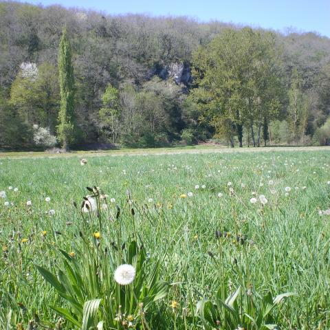 Campagne, Vallée Vézère