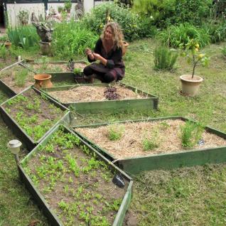 Catherine heine Naturoptahe dordogne Périgord plantes sauvages week-end nature